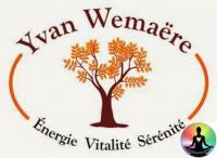 Le massage énergétique Chi Nei Tsang, Yvan Wemaëre